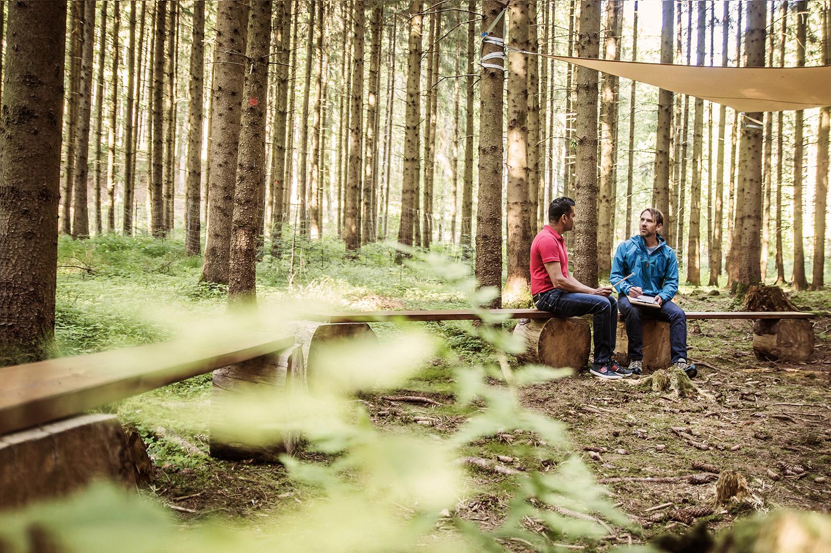 Workshop-Wald